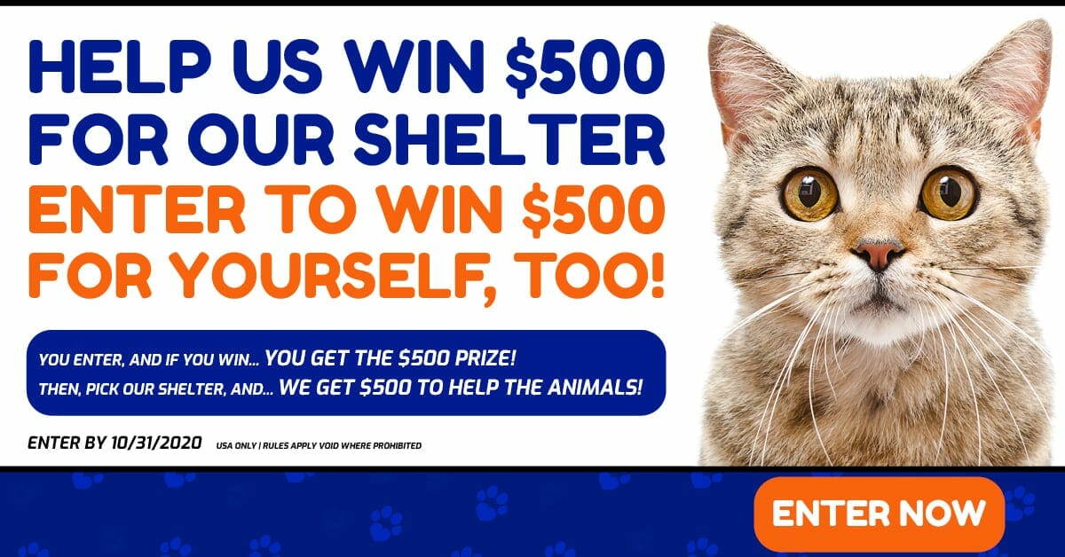 Animal Rescue Shelter Charities Giveaway