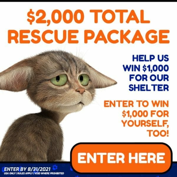 Adopt a Cat Total Rescue Package $2,000