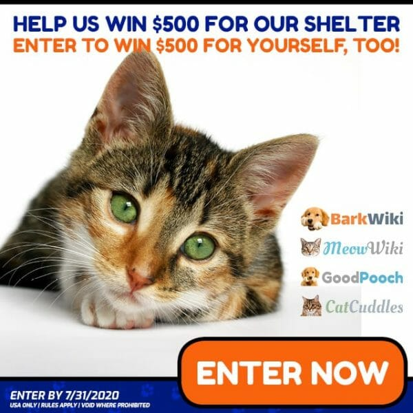 Animal Shelter Donations Giveaway