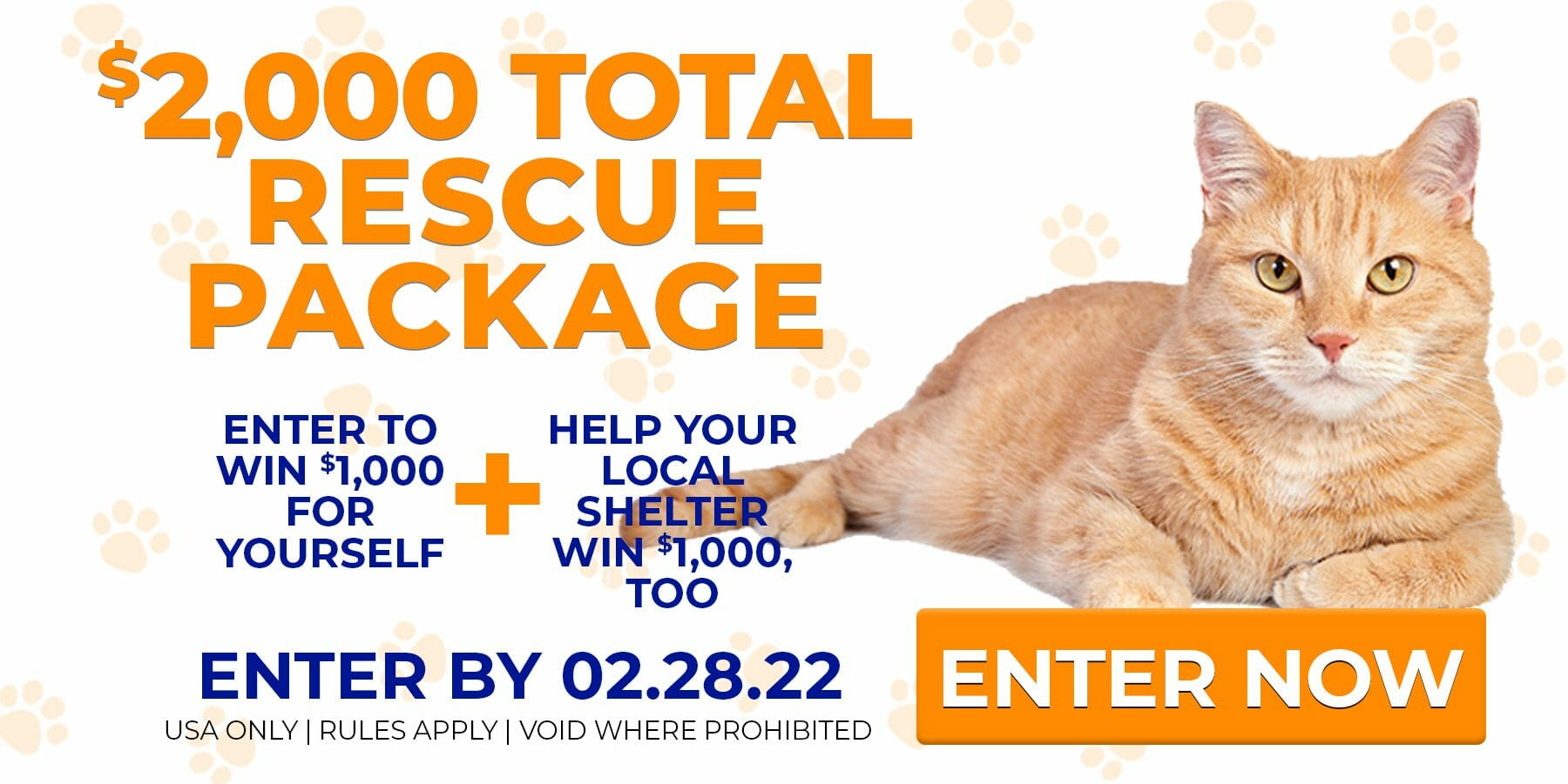 cat rescue charity donation