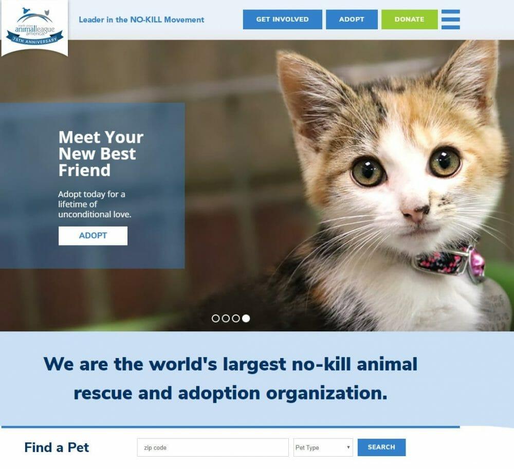 north shore animal leauge no kill shelter adoption